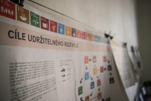 SDG, Cíle udržitelného rozvoje