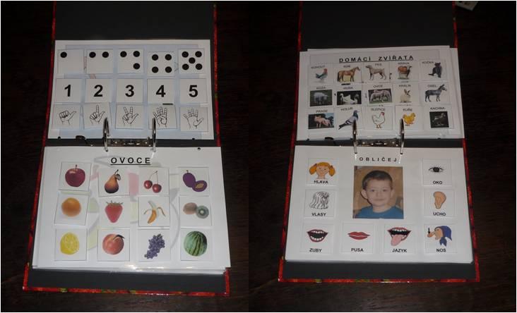 Výuková kniha, slovní zásoba podle kategorií